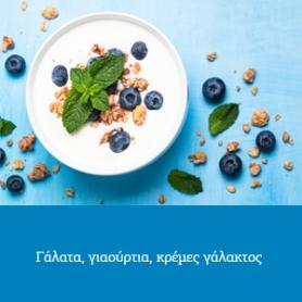 Γάλατα-Γιαούρτια-Κρέμες Γάλακτος